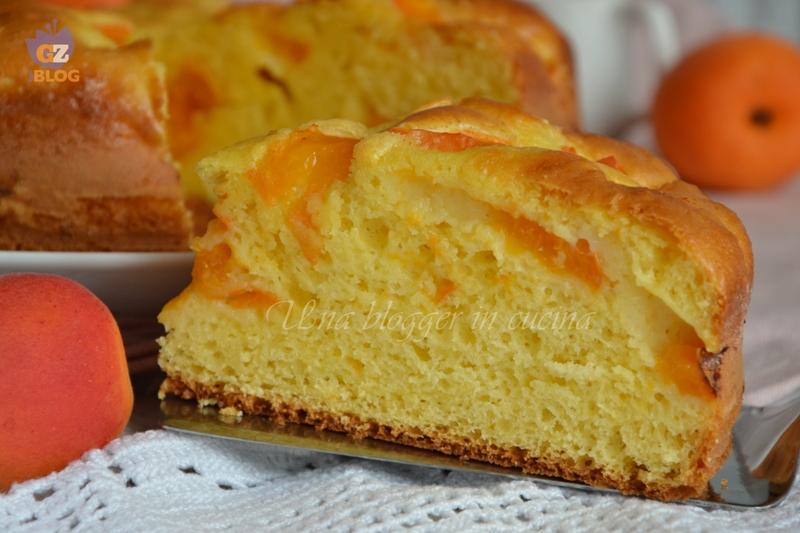 torta all'albicocca (2)