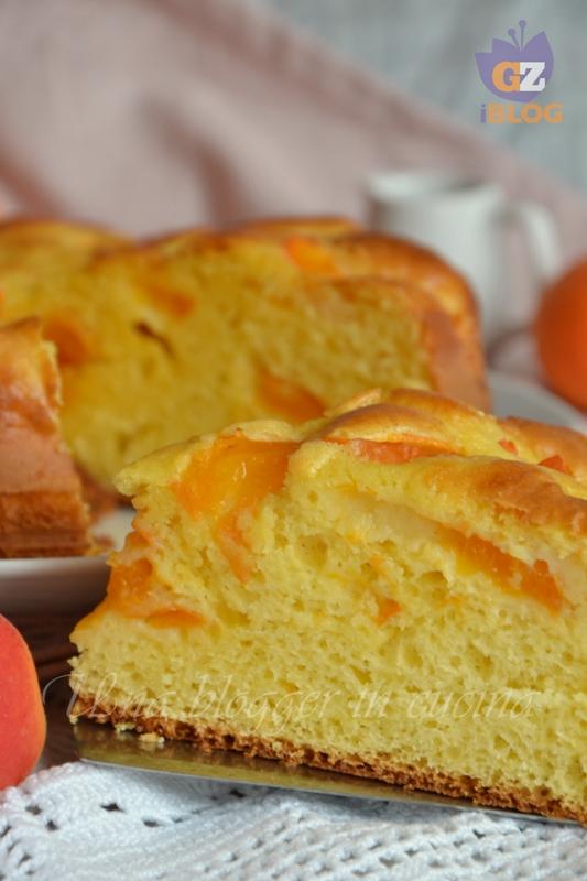 torta all'albicocca (3)