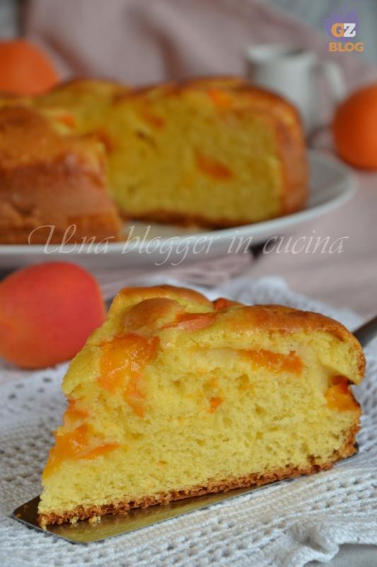 torta all'albicocca (4)