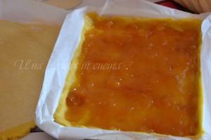 crostata alle pesche (2)
