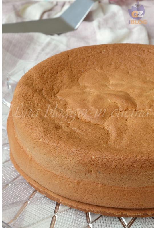 pan di spagna (2)