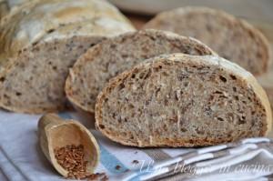 Pane integrale ai semi di lino (2)