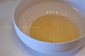 panbrioche ricetta base (3)