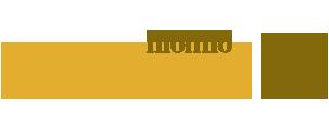 logo mettone
