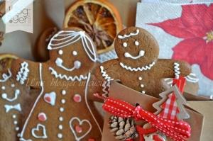 Biscotti gingerbread (13)