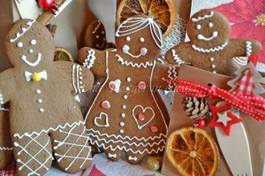 Biscotti gingerbread (14)