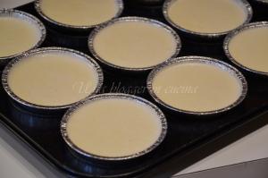 bavarese al cioccolato bianco con mirtilli rossi essiccati (7)