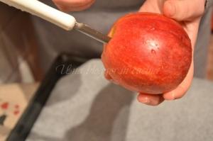 chips di mela (1)