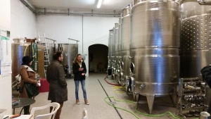 Anteprima vernaccia di San Gimignano 14-15 febbraio 2015 (7)
