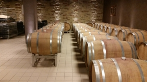 Anteprima vernaccia di San Gimignano 14-15 febbraio 2015 (9)