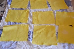 Cannelloni Michelis (1)