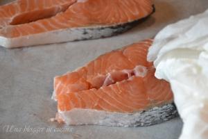 procedimento salmone croccante (3)