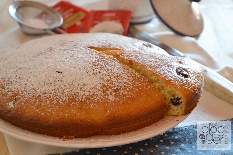 torta cocco e mirtilli rossi essiccati (1)