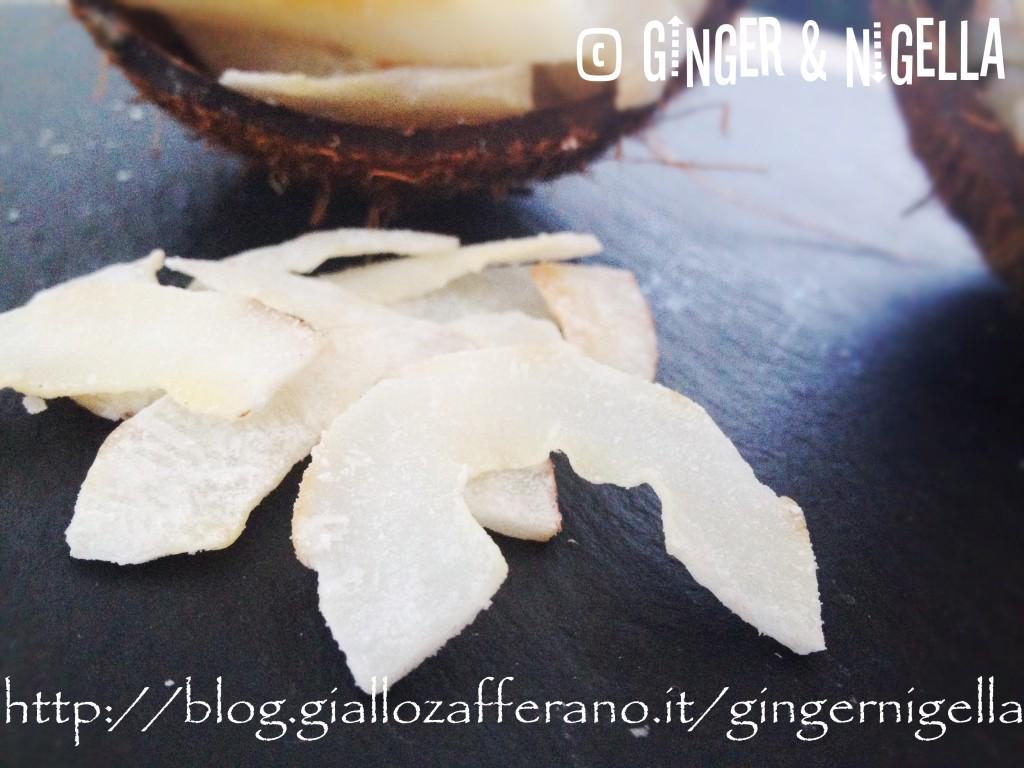 Chip di cocco essiccato