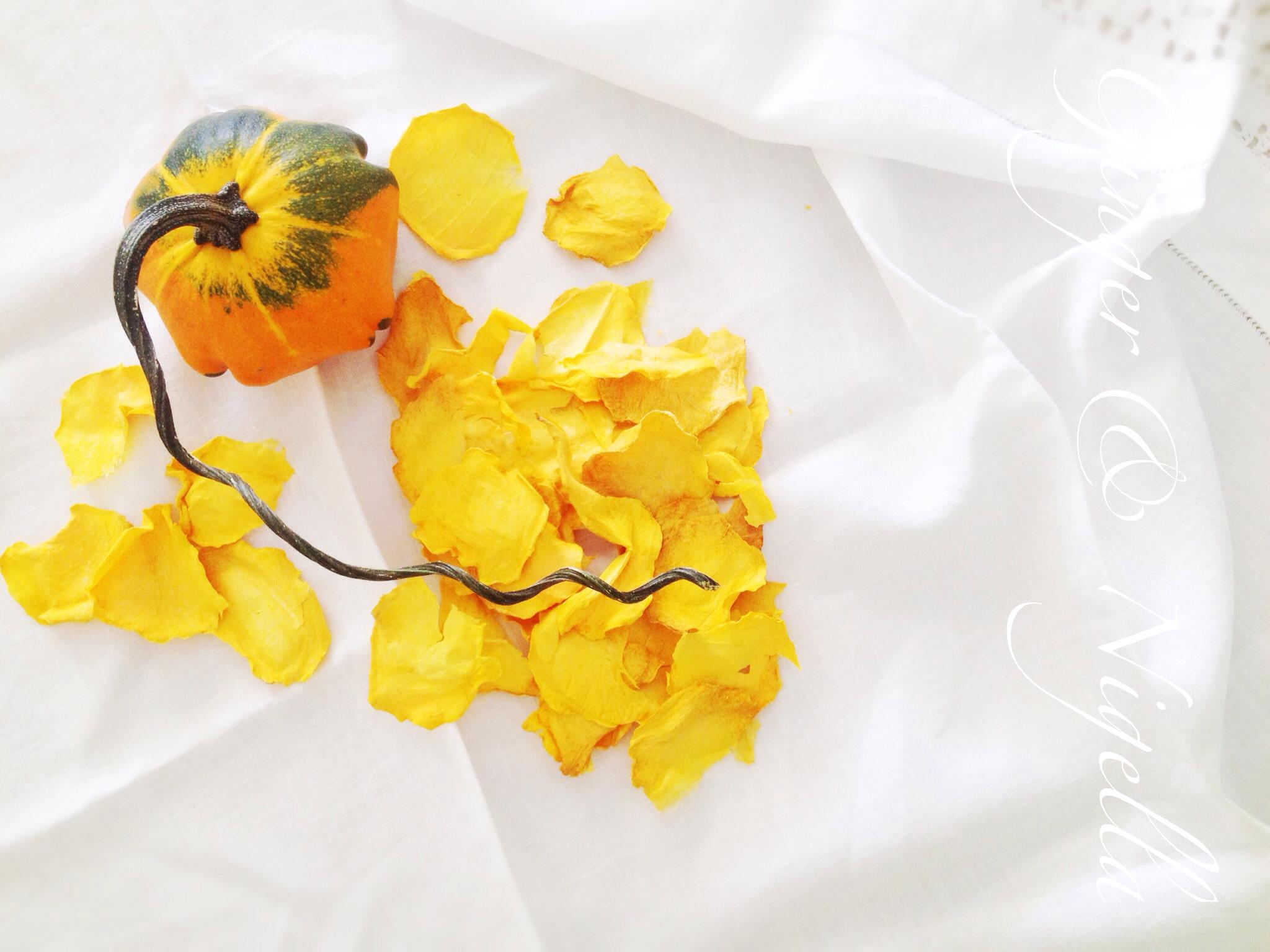 Essiccazione Zucca Di Halloween.Essiccare La Zucca