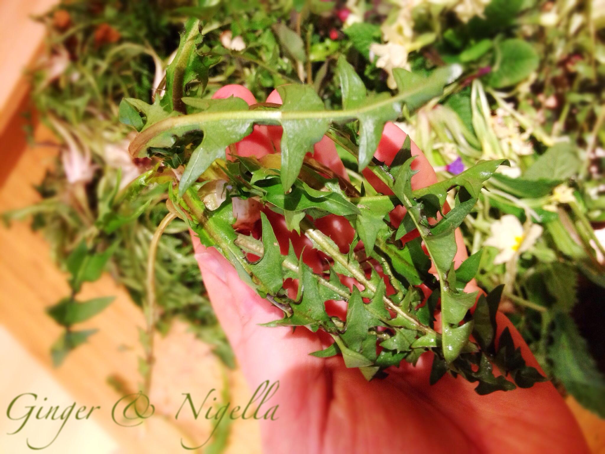 Fiori E Piante Commestibili erbe spontanee commestibili