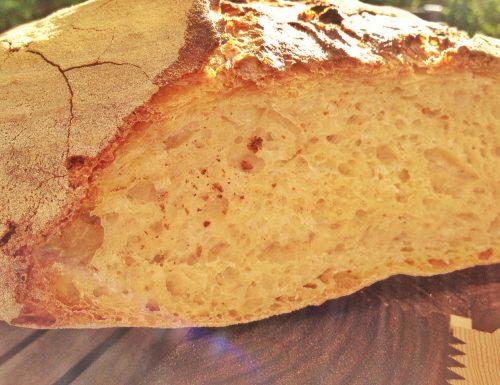 Pane rustico a lievitazione naturale con farina di Enrkir.