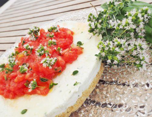 Cheesecake salato di bufala e pomodori