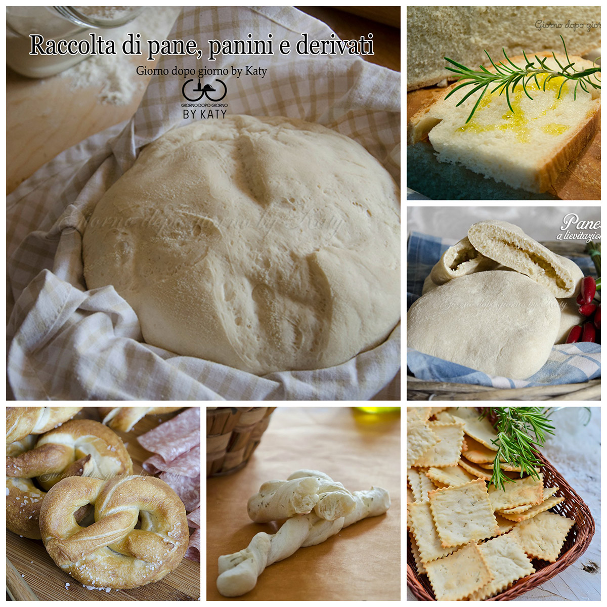 pane lievitati raccolta ricette, crackers, grissini, panini
