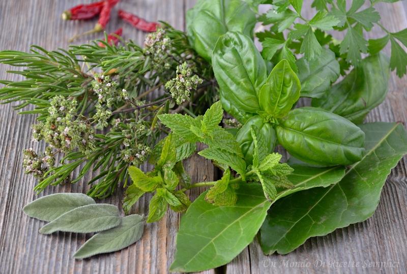 Erbe aromatiche semina e raccolta un mondo di ricette for Seminare basilico