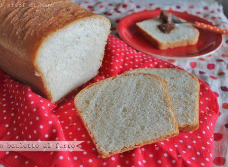 Pan bauletto al farro