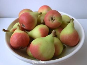 succo di frutta alla pera fatto in casa2