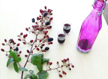 Morellino | Liquore alle more fatto in casa