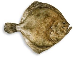 Surici fritti ricetta calabrese for Pesce rosso razza