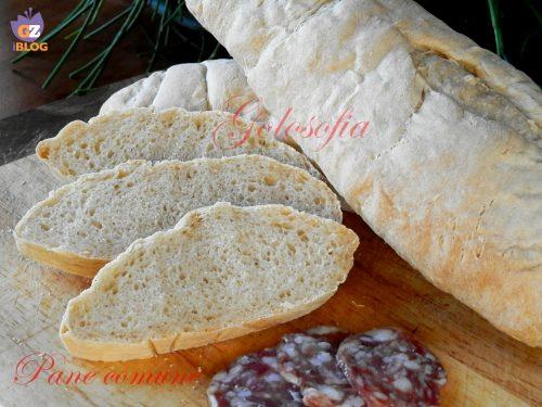 Pane comune, ricetta semplice lievitati