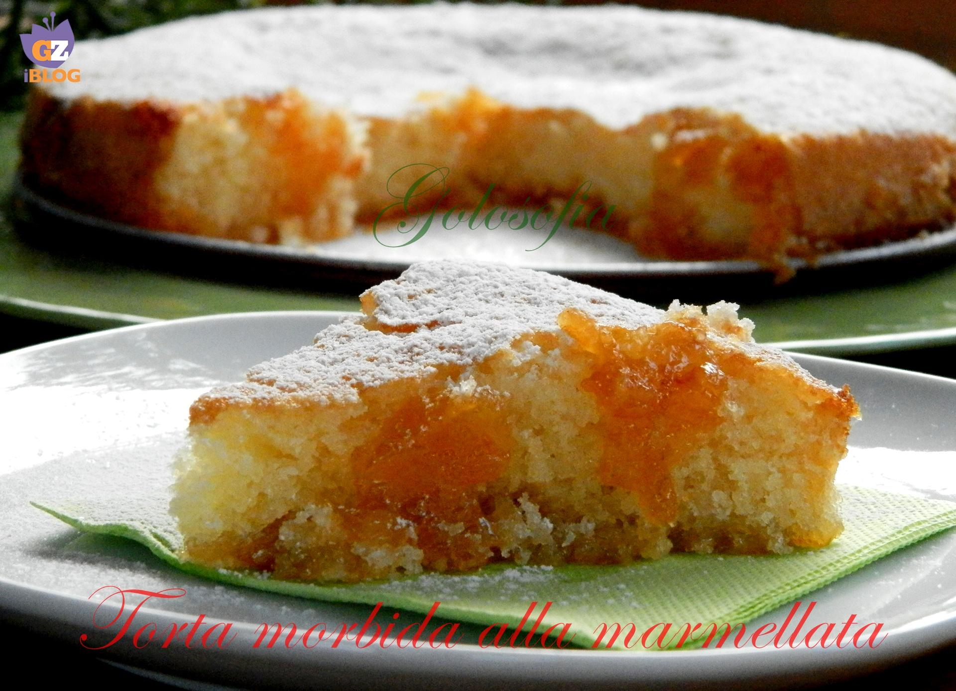 Torta morbida alla marmellata di albicocche-ricetta torte-golosofia