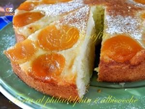 Torta soffice al philadelphia e albicocche-ricetta torte-golosofia