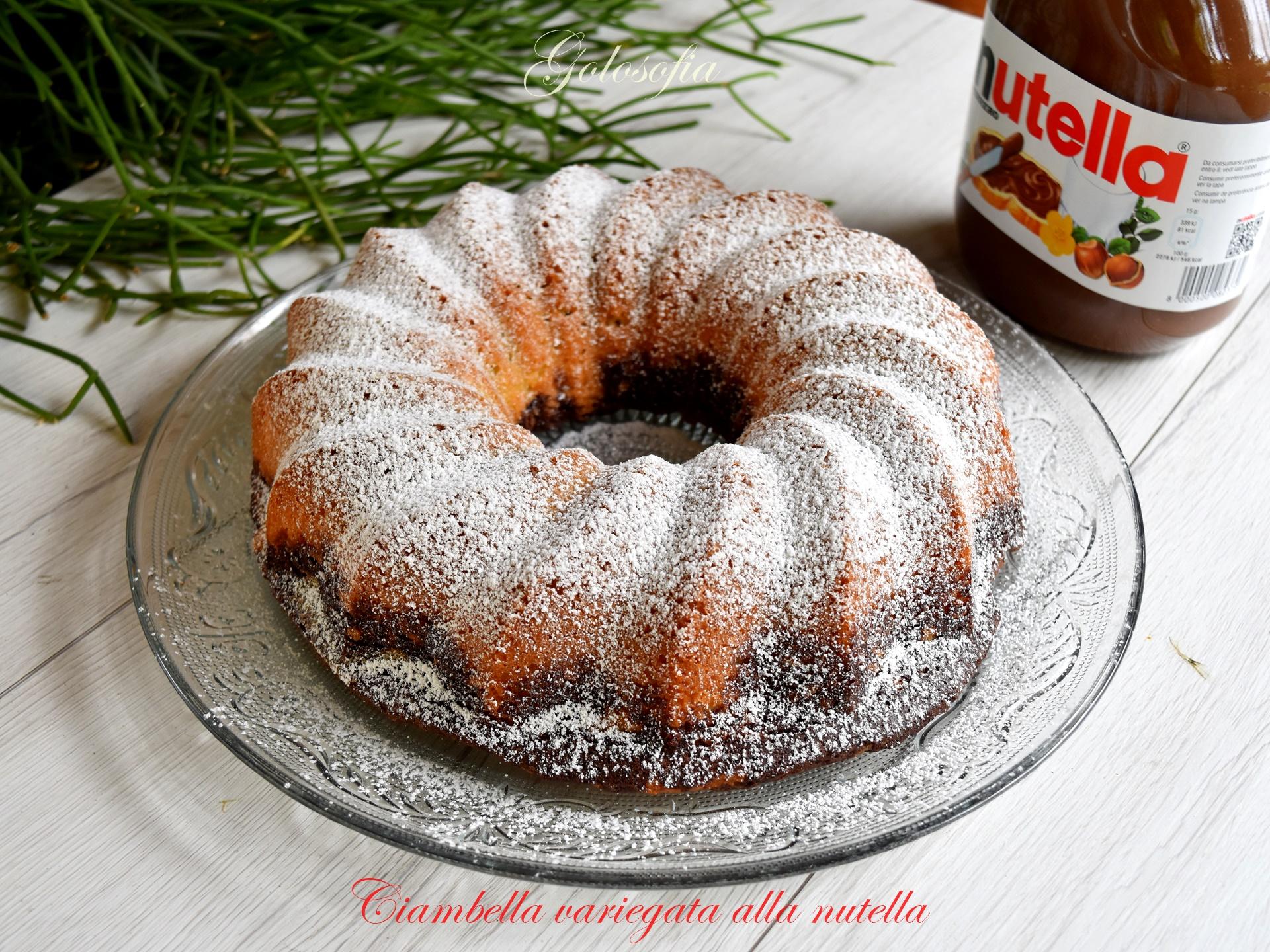 Ciambella variegata alla nutella-ricetta torte-golosofia