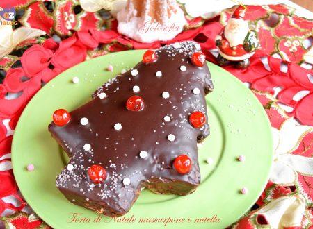 Torta di Natale mascarpone e nutella, ricetta soffice e golosa!