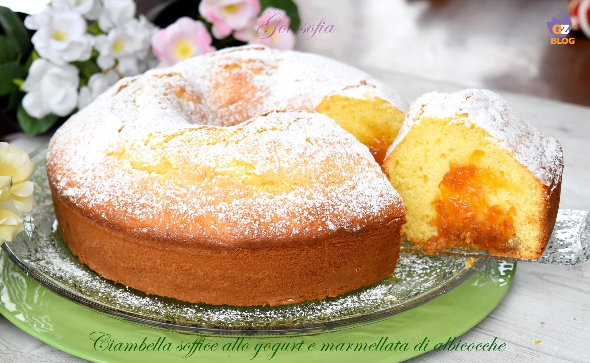 Ciambella soffice allo yogurt e marmellata di albicocche-ricetta torte-golosofia
