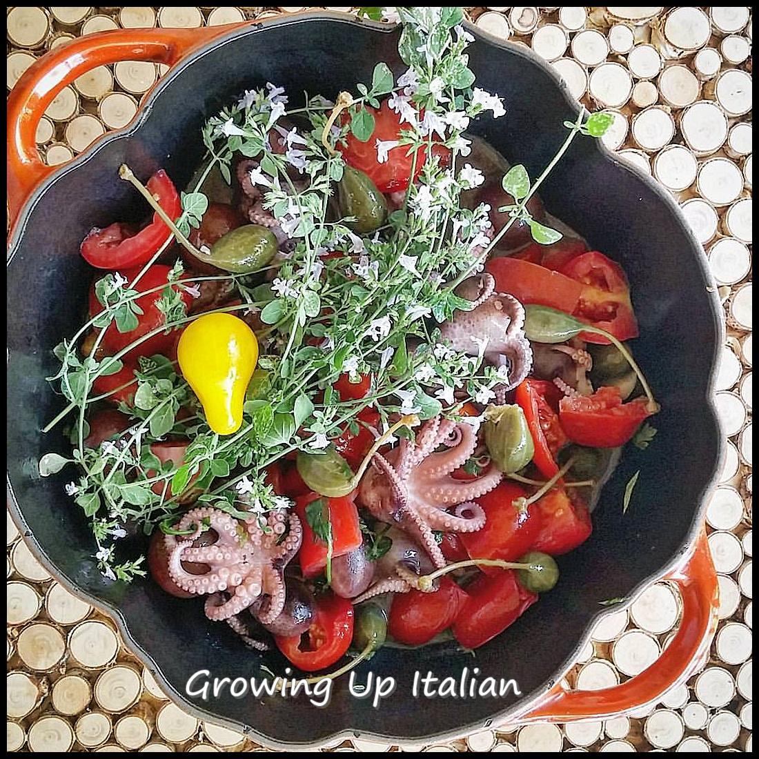 Moscardini alla luciana ricetta tradizionale italiana for Cucinare moscardini