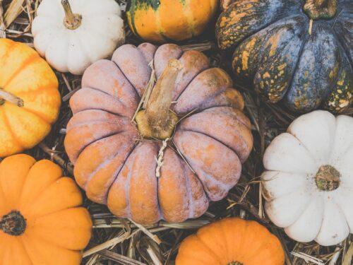 Frutta e Verdura di Ottobre: cosa consumare in questo mese