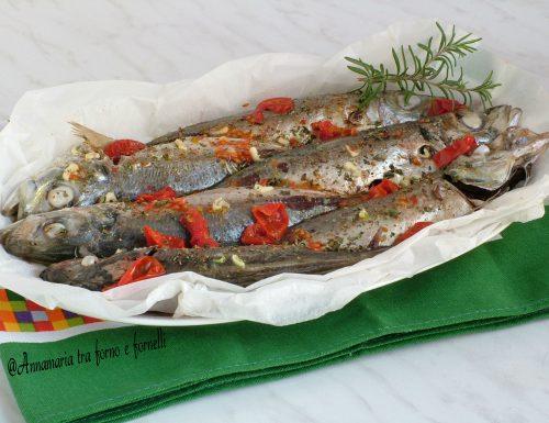 Pesce sauro con pomodorini al microonde