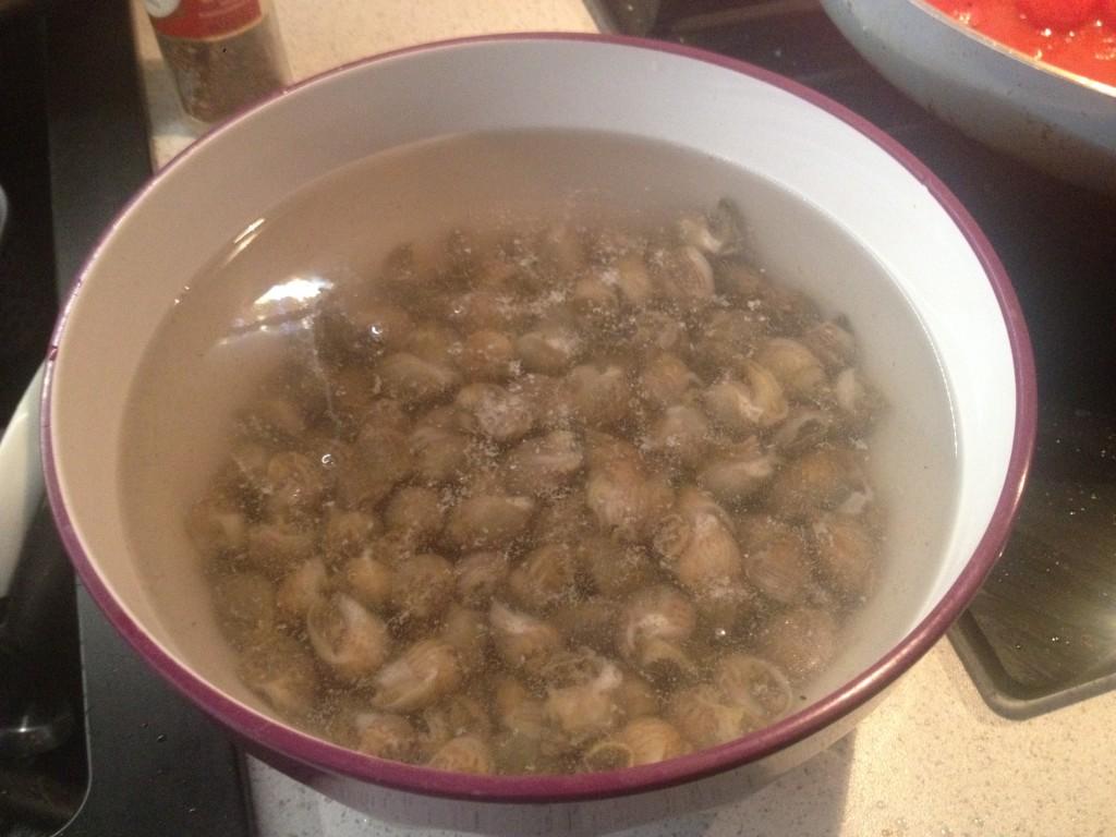 Lumachine di mare o Maruzzelle al pomodoro