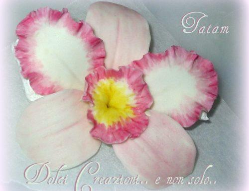Orchidea Cattleya in pasta di zucchero -Tutorial