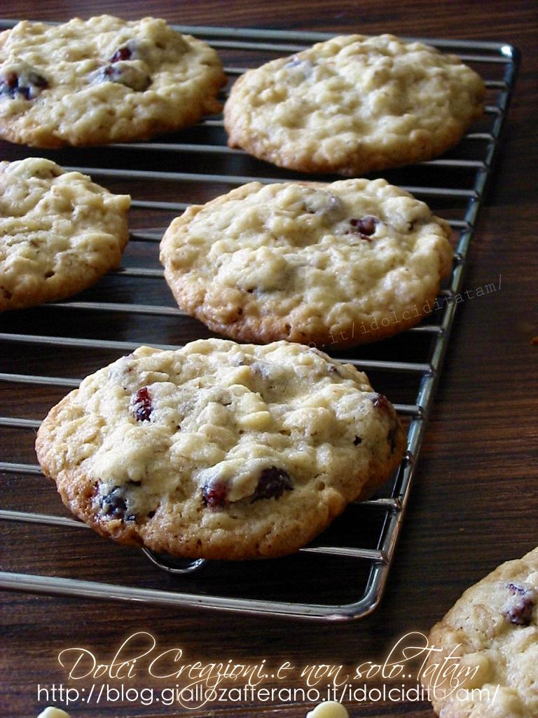 Biscotti con mirtilli rossi3