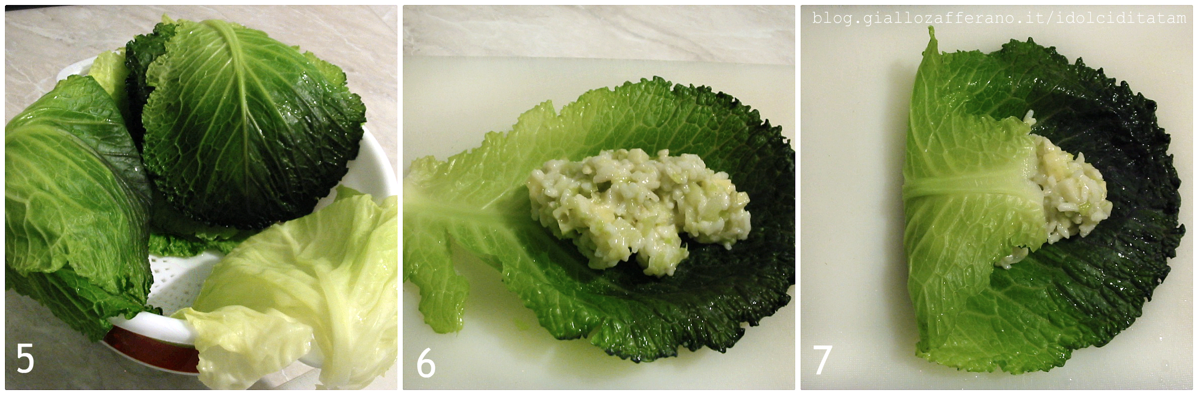 involtini-di-verza-al-riso5-7