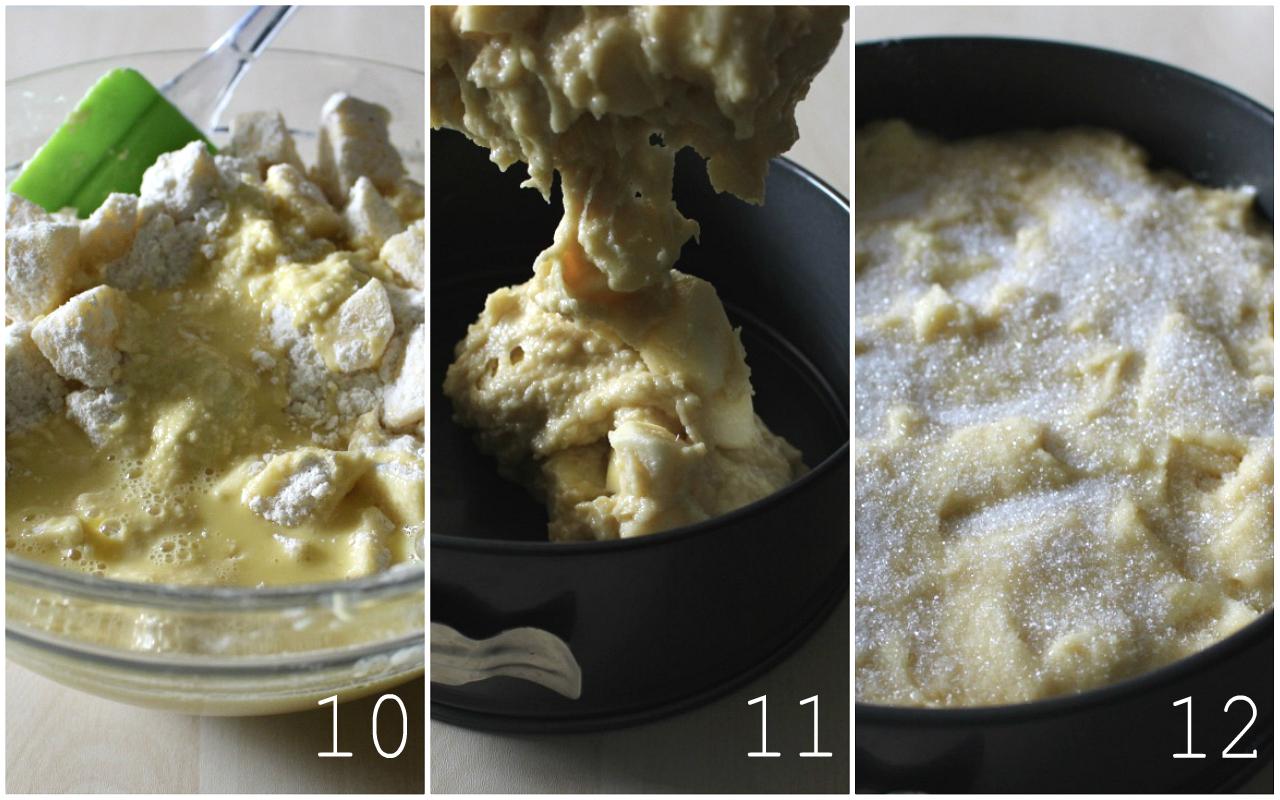 torta-di-mele-irlandese-10-12