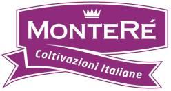 Monterè