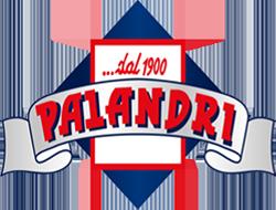 logo palandri