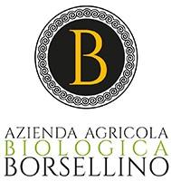 logo borsellino