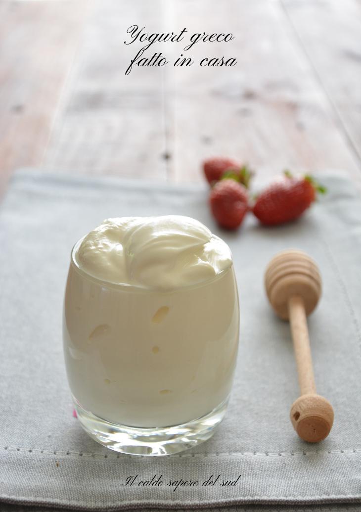 Ricetta Per Yogurt Greco Con Yogurtiera.Yogurt Greco Fatto In Casa Blog Di Il Caldo Sapore Del Sud