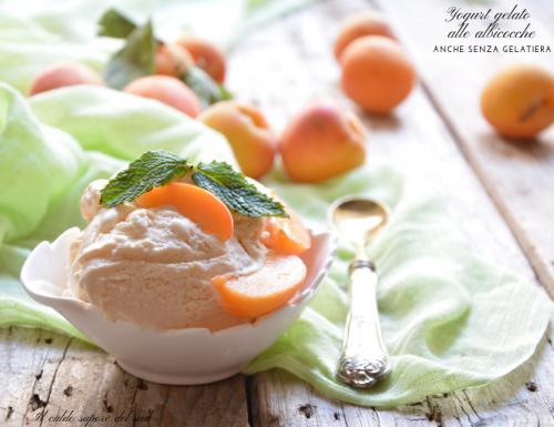 Yogurt gelato all'albicocca anche senza gelatiera