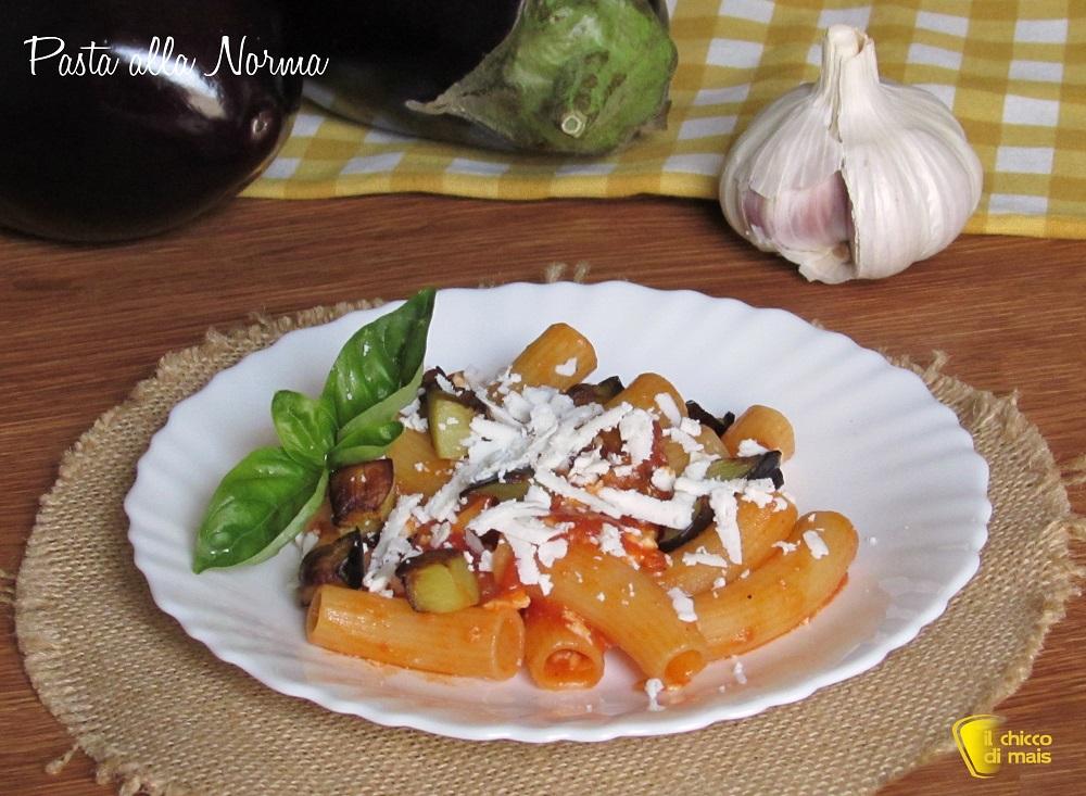 ricette con melanzane Pasta alla norma con melanzane e ricotta salata ricetta siciliana il chicco di mais
