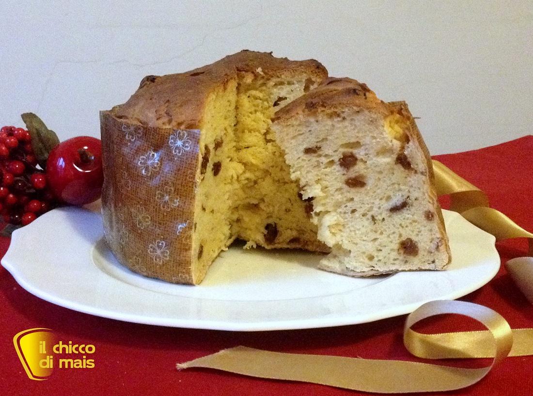 I dolci di natale Panettone senza glutine ricetta con Lievito Madre il chicco di mais