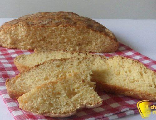 Pane di mais senza glutine (ricetta con LM)